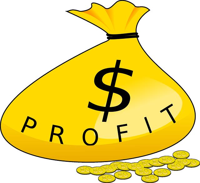 dolarový profit